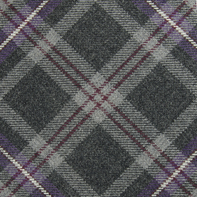 Hebridean Thistle